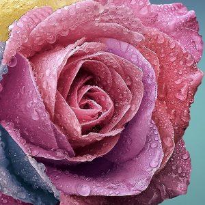 Huiles essentielles Fleur mon amour